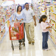 Family grocery shopping — Stock Photo #4757875