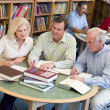 Mature students studying together in library — Foto Stock