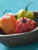 Scotch Bonnet Chilies In a Wooden Dish — Stock Photo