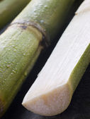 Fresh Sugar Cane Split in Half — Stock Photo