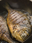 Emperor Bream Roasted with Tikka spices — Stock Photo