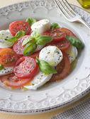 Tomato Mozzarella Cheese and Basil Salad — Stock Photo