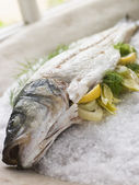 Whole Seabass Roasted in a Sea Salt Crust with Fennel — Stock Photo