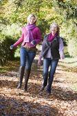 Vuxit upp mor och dotter på promenad — Stockfoto