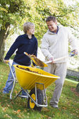 Son helping father collect leaves — Stock Photo