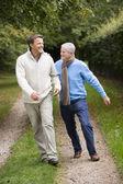 Far och vuxen son promenader längs väg — Stockfoto