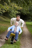 Grown up son pushing father in wheelbarrow — 图库照片