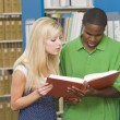 Two university students working in library — Stock Photo