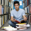 Foto Stock: University student working in library