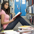 Stock Photo: University student studying in library