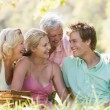 Parents with adult children on picnic — Stock Photo