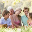 Family at a picnic smiling — Stock Photo