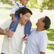 Grandfather with adult son and grandchild — Stock Photo