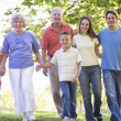Extended family walking in park holding hands and smiling — Stock Photo