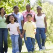 Extended family walking in park holding hands and smiling — Stock Photo #4763739