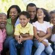 Extended family sitting outdoors smiling — Stock Photo