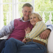 Couple in living room smiling — Stock Photo #4764823