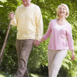 Couple walking on path in park holding hands and smiling — Stock Photo #4765019