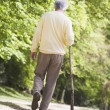 Stock Photo: Mwalking outdoors