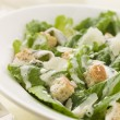 Bowl of Caesar Salad — 图库照片