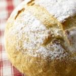 American Sour Dough Bread — Stock Photo #4765200