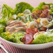 Stock Photo: AmericCobb Salad