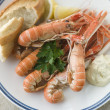 Langouste with Garlic Mayonnaise Lemon and Crusty baguette — Stock Photo