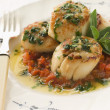 Pan Fried Scallops Piperade and Garlic Butter — Stock Photo