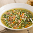 Bowl of Pistou Soup - Stock Photo