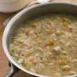Farmhouse Chicken and Vegetable Soup - Zdjęcie stockowe