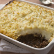 Cottage Pie in a Dish - Stock Photo