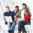 Four in lobby pointing at laptop smiling — Stock Photo