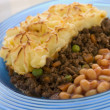 Cottage Pie and Baked Beans - Stock Photo