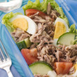 Stock Photo: Tuna Salad Lunch Box