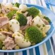 Tuna and Broccoli Pasta Shells — Stock Photo #4767630