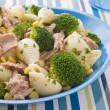 Tuna and Broccoli Pasta Shells — Stock Photo