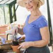 Woman in greenhouse putting soil in pot and smiling - Foto Stock