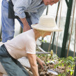Stock Photo: Woman in greenhouse planting seeds and man holding watering can