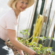 Woman in greenhouse planting seeds smiling — Stock Photo