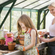 Young girl and woman in greenhouse putting soil in pots smiling — Stockfoto