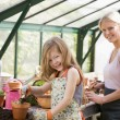 Young girl and woman in greenhouse putting soil in pots smiling - Stock fotografie