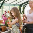 Young girl in greenhouse watering plant with woman holding pot s - Stock Photo
