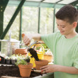 Young boy in greenhouse putting soil in pot smiling - Stock Photo