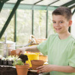 Young boy in greenhouse putting soil in pot smiling - 图库照片