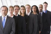 Group of office staff lined up — Stock Photo
