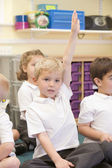 A schoolboy raises his hand in a primary class — Stock Photo
