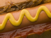 Hot Dog with Fried Onions mustard and Tomato Ketchup — Stock Photo