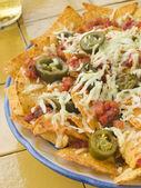Nachos salsa jalapenos ve peynir tabağı — Stok fotoğraf