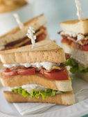 Toasted Triple Decker Club Sandwich with Fries — Stock Photo