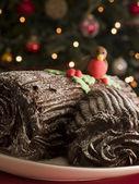 Chocolate Yule Log — Stock Photo